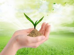 2016第三十二届中国植保信息交流暨农药械交易会
